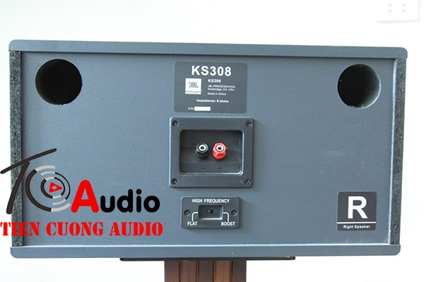 Mặt sau loa karaoke JBL 308