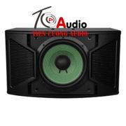 Loa Karaoke Paramax P-1500 Hát Karaoke Hay