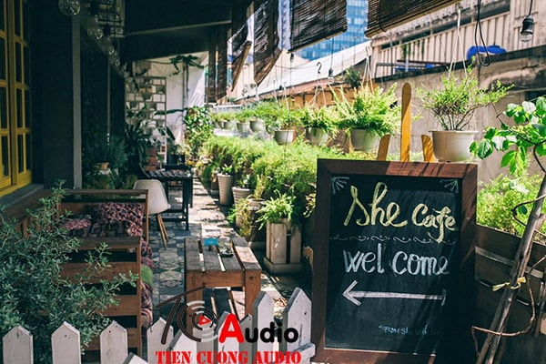 Loa dùng cho quán Cafe