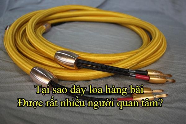 Rất nhiều người đam mê âm thanh quan tâm đến dây loa hàng bãi