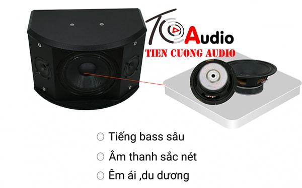 Loa karaoke AAD KM8