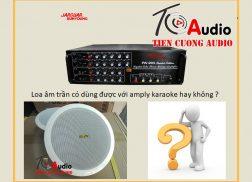 Loa âm trần có dùng được với amply karaoke hay không